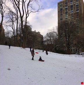 luge à Central Park