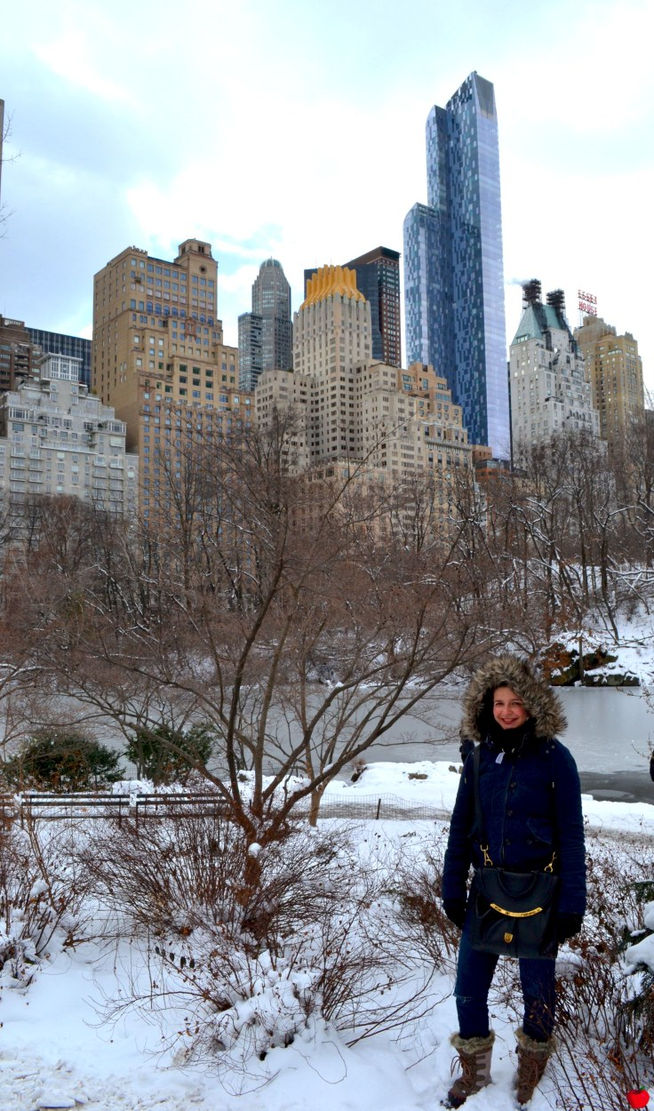 17-premieres-neiges-new-york-central-park-pieds-neige-marie-pomme