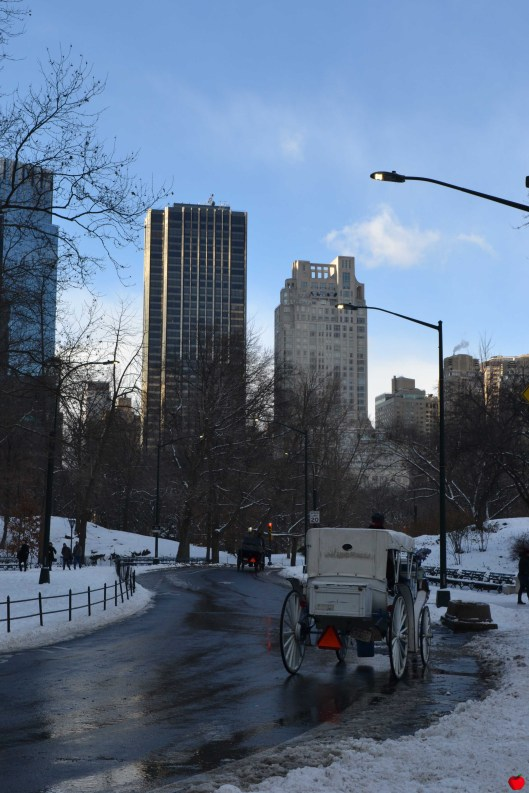21-premieres-neiges-new-york-central-park-carriole-pomme