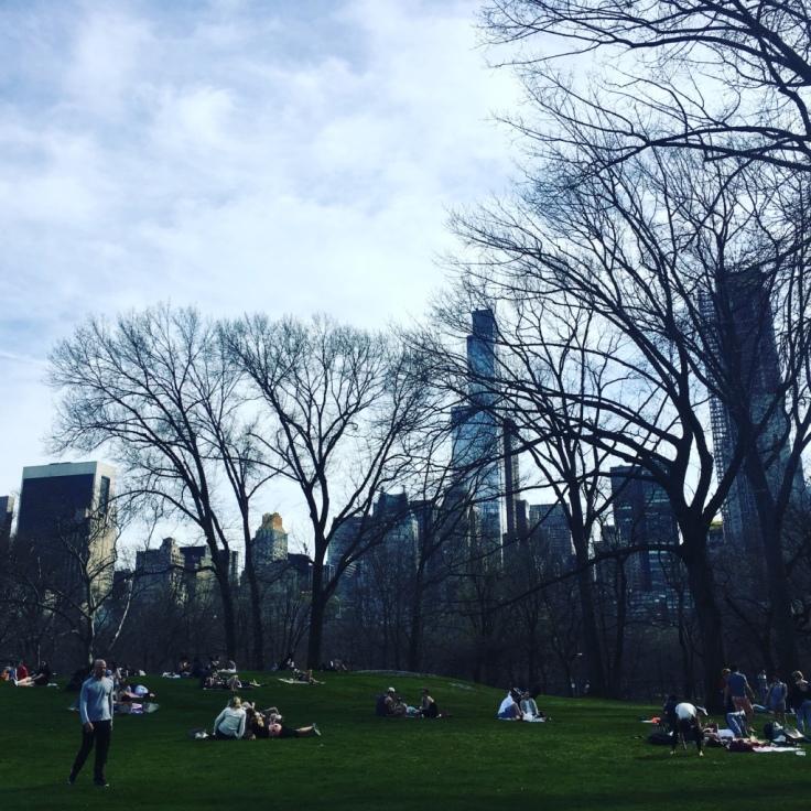 19-Central Park