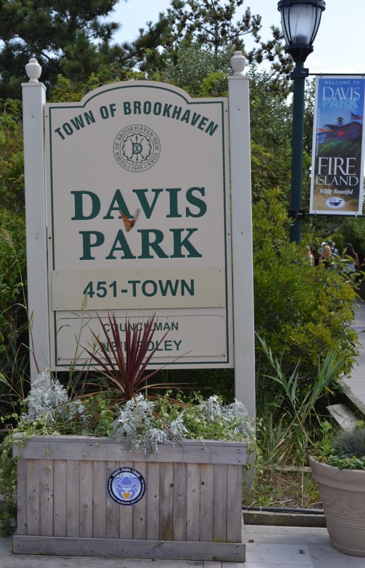 fire_island_davis_park.jpg