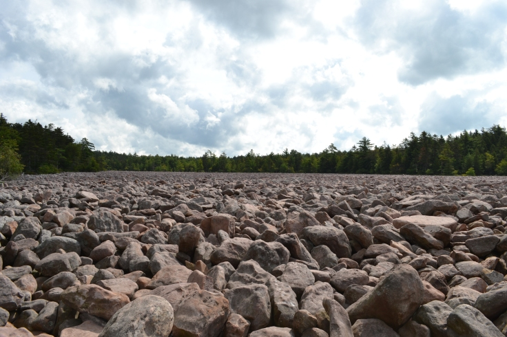 Hickory_Run_State_Park_Boulder_Field