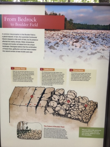 Hickory_Run_State_Park_Boulder_Field_formation2